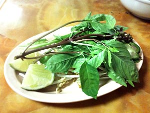 Pho garnish plate: basil, culantro, sprouts, lime, peppers