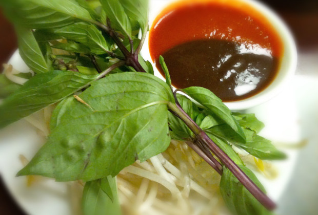 Pho garnish and dipping sauce