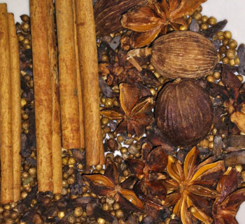 Spices used on making pho broth: star anise, cinnamon sticks, coriander seeds, cardamom, cloves
